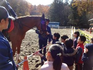 20161205平安騎馬隊 (46)